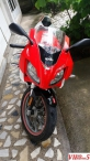 Aprilia Rs 50 cc 2009